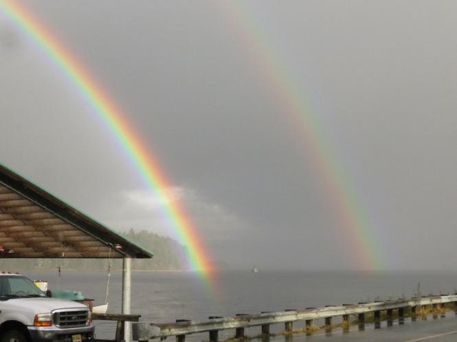 rainbow swim 001