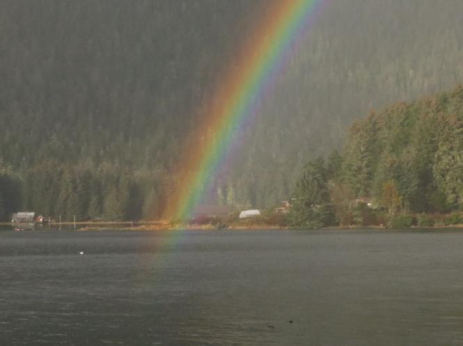 rainbow swim 002