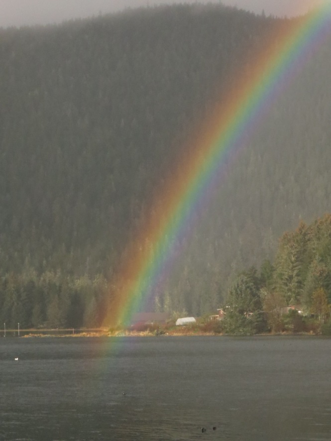 rainbow swim 003