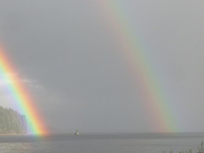 rainbow swim 006