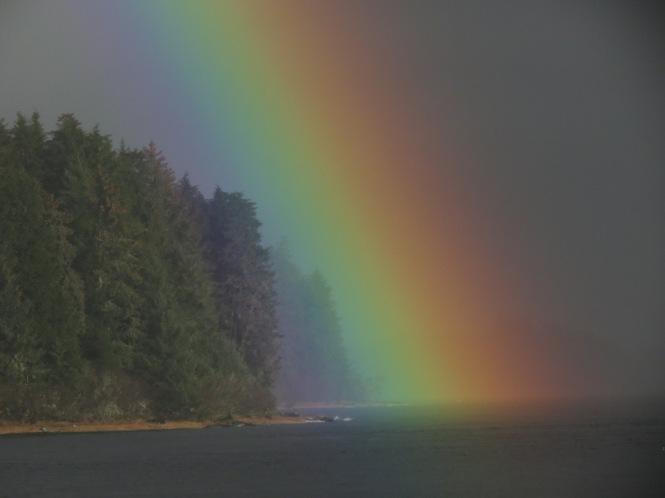 rainbow swim 009