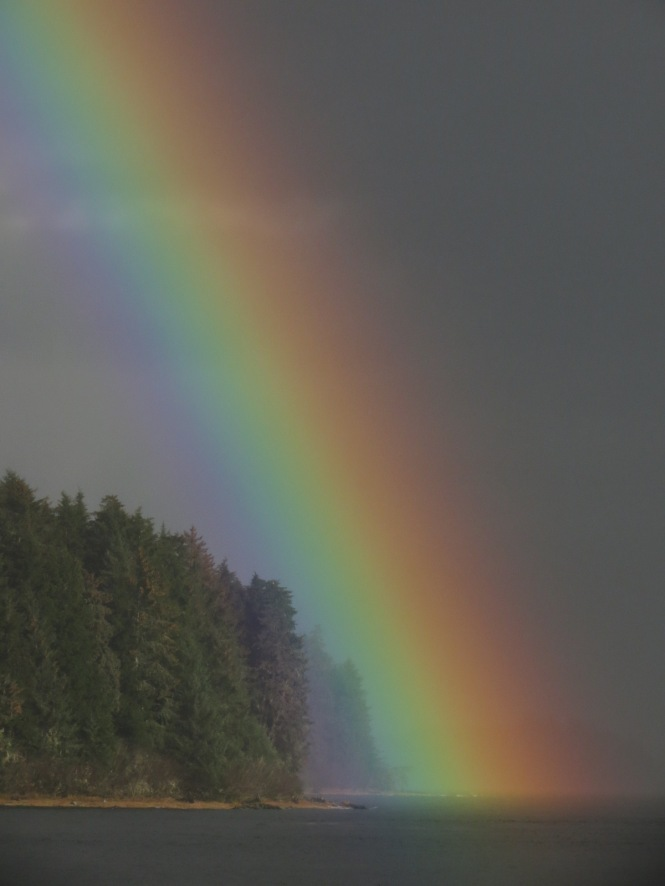 rainbow swim 011