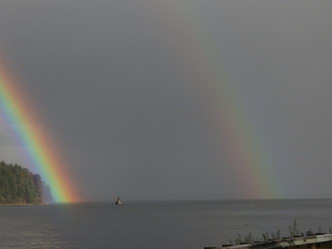 rainbow swim 013