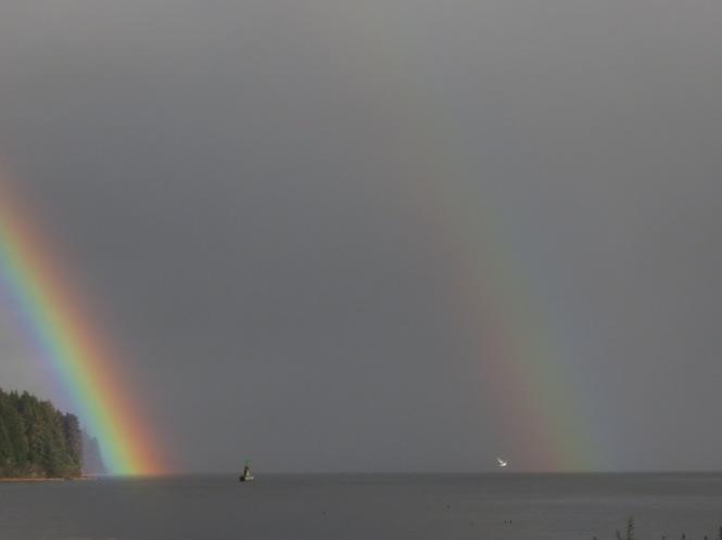 rainbow swim 016