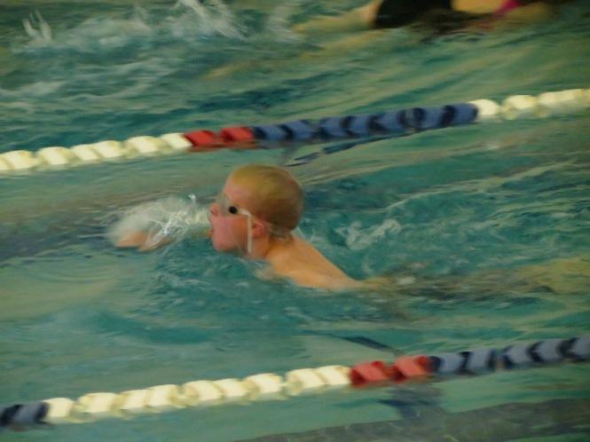 rainbow swim 020