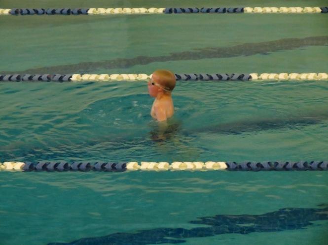 rainbow swim 029